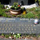 Světlo na hrobě Ondřeje Sekory zakladatele českého ragby po 95 letech od premiéry v Brně
