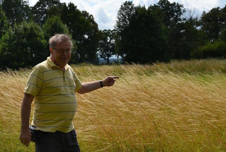 Bývalé ragbyové hřiště v Přelouči je navrženo do soustavy Natura 2000